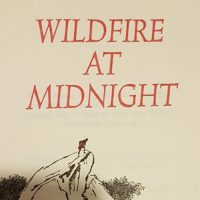Book Art: Wildfire at Midnight